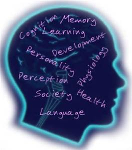 learning and cognitive perspectives in psychology essay Behaviorist vs cognitive social learning and constructivist in this essay behaviorist and cognitivists the cognitive perspective favors the assessment of.